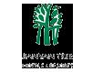 Banyan Tree Hotel Maroc Emailing Marketing, Casablanca, Emailing Maroc